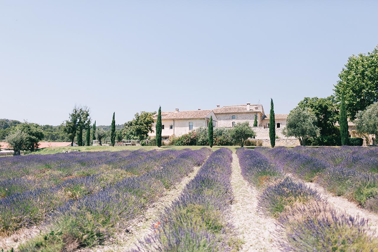 magnifique mariage dans un domaine au coeur de la Drome provençale le domaine de patras avec un champ de lavande magnifique